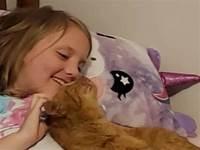媽意外發現女兒睡覺竟然摟著一隻陌生橘貓:絕對是慣犯!